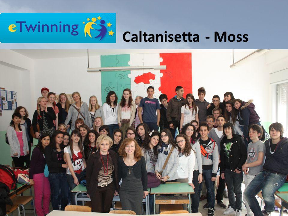 Caltanisetta - Moss