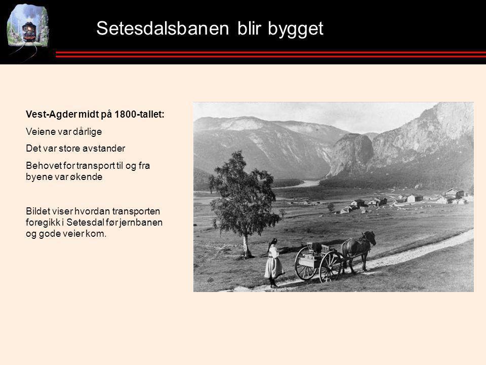 Setesdalsbanen blir bygget Vest-Agder midt på 1800-tallet: Veiene var dårlige Det var store avstander Behovet for transport til og fra byene var økende Bildet viser hvordan transporten foregikk i Setesdal før jernbanen og gode veier kom.