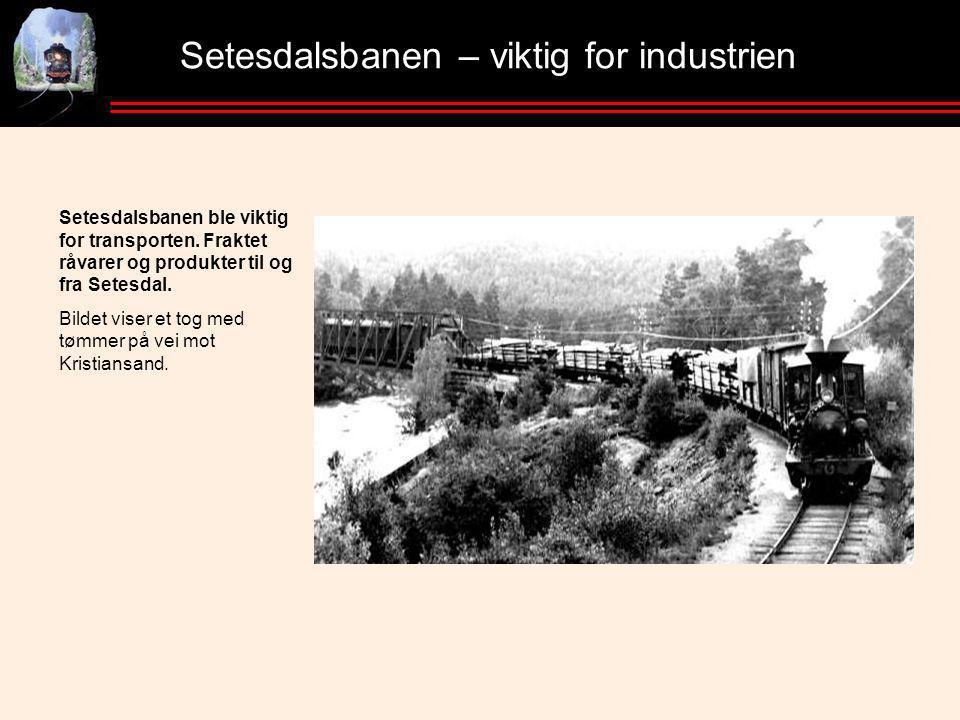 Setesdalsbanen – viktig for industrien Setesdalsbanen ble viktig for transporten.