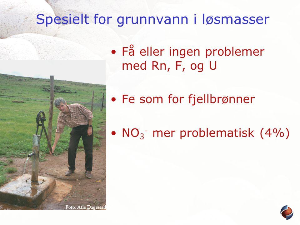 Spesielt for grunnvann i løsmasser •Få eller ingen problemer med Rn, F, og U •Fe som for fjellbrønner •NO 3 - mer problematisk (4%) Foto: Atle Dagesta