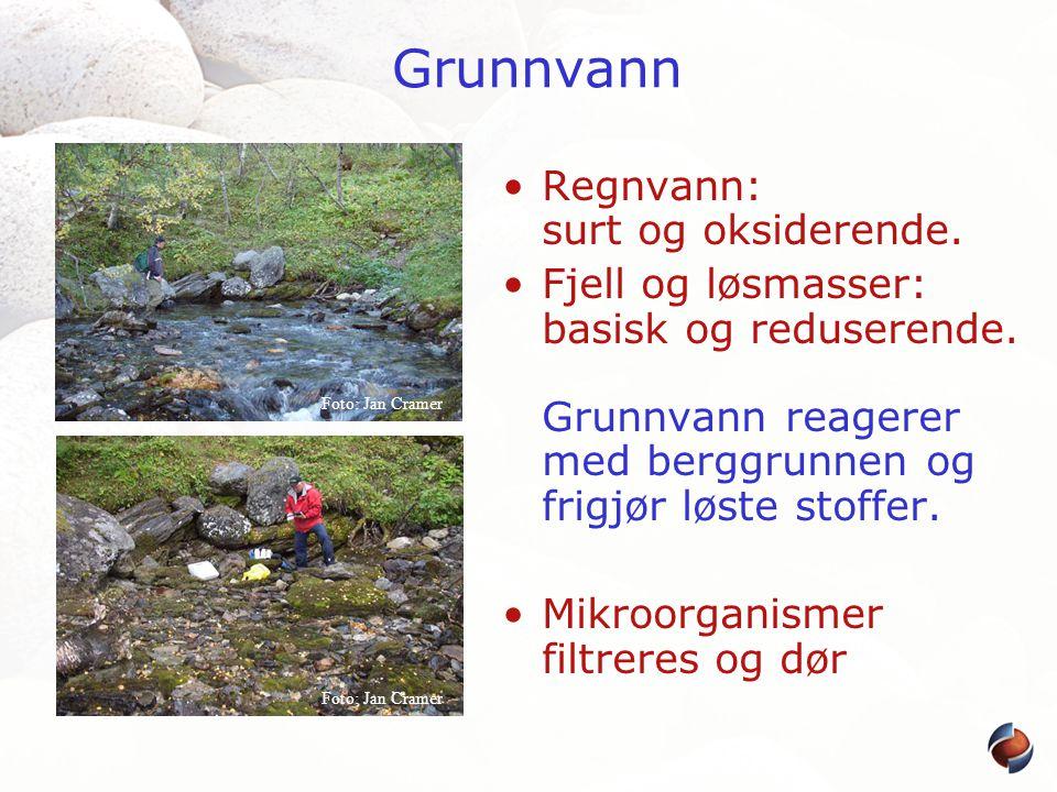 Grunnvann •Regnvann: surt og oksiderende. •Fjell og løsmasser: basisk og reduserende. Grunnvann reagerer med berggrunnen og frigjør løste stoffer. •Mi