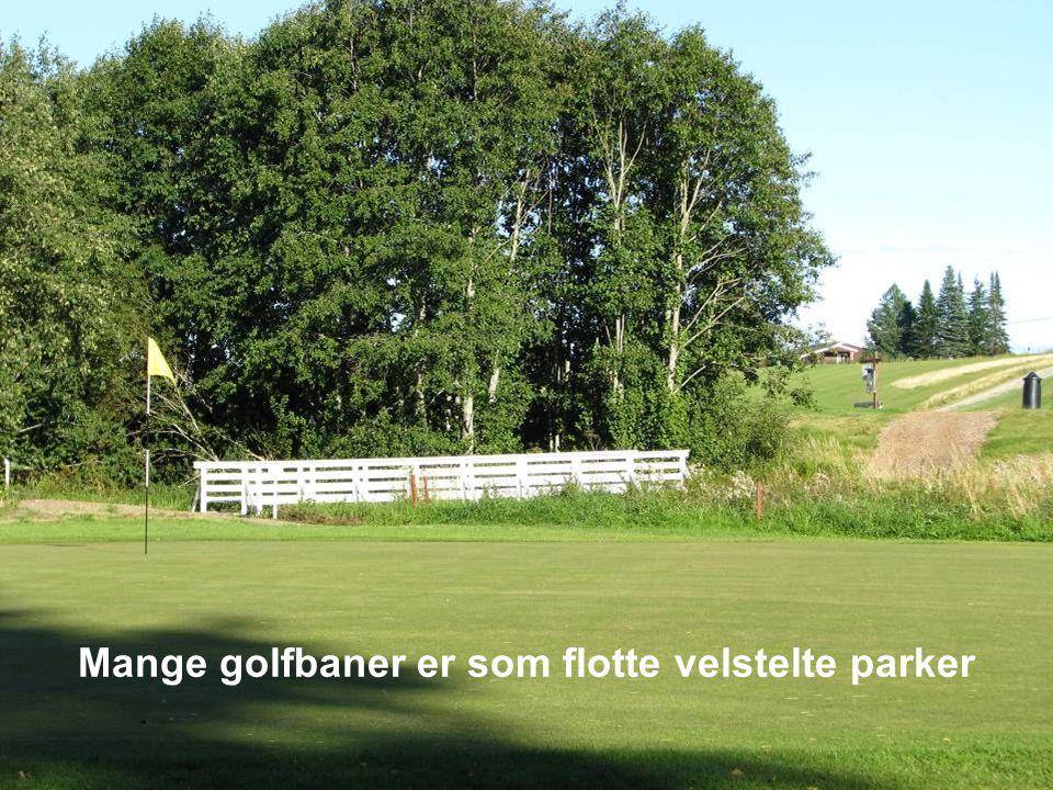 Golf er et ærlig spill der majoritetene av spillerne er så ærlige at det over hode ikke er nødvendig med dommere.