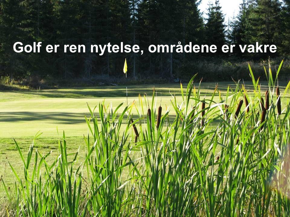 Golf er et ærlig spill der majoritetene av spillerne er så ærlige at det over hode ikke er nødvendig med dommere. Golf er utrolig sosialt !