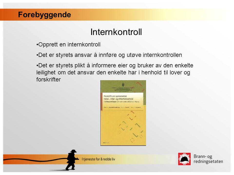 Internkontroll •Opprett en internkontroll •Det er styrets ansvar å innføre og utøve internkontrollen •Det er styrets plikt å informere eier og bruker