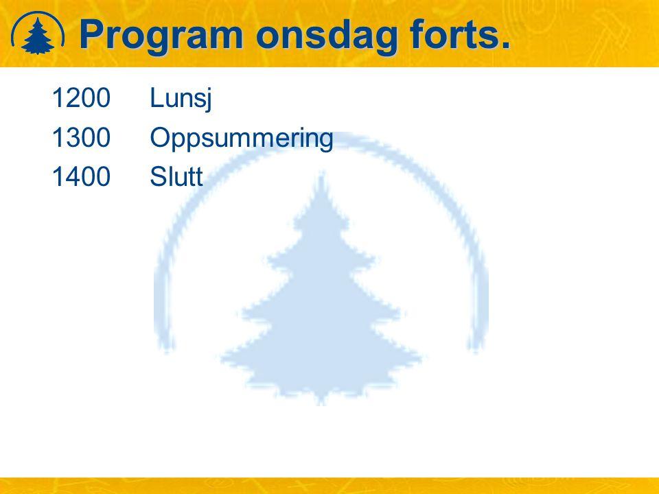 Program onsdag forts. 1200Lunsj 1300Oppsummering 1400Slutt