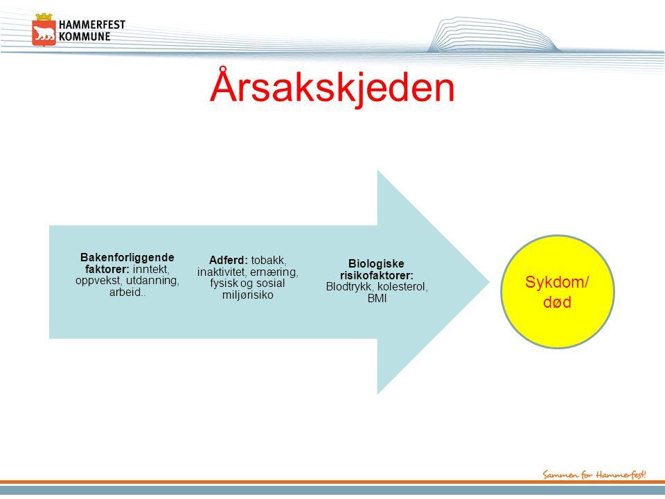 Hvorfor en folkehelseplan nå.•Samhandlingsreformen •Ny FOLKEHELSELOV fra 1.