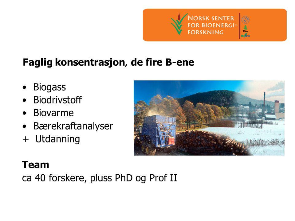 Faglig konsentrasjon, de fire B-ene •Biogass •Biodrivstoff •Biovarme •Bærekraftanalyser + Utdanning Team ca 40 forskere, pluss PhD og Prof II