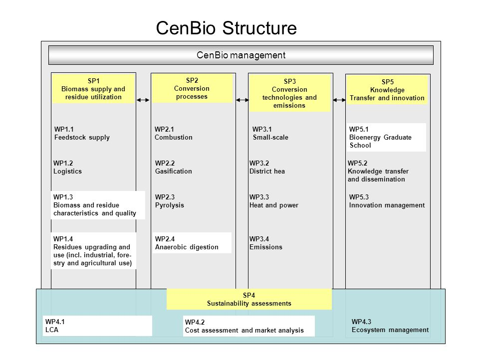 CenBio Structure WP1.1 Feedstock supply CenBio management WP1.2 Logistics WP1.3 Biomass and residue characteristics and quality WP2.1 Combustion SP1 Biomass supply and residue utilization SP2 Conversion processes WP2.3 Pyrolysis WP2.2 Gasification WP2.4 Anaerobic digestion WP3.1 Small-scale SP3 Conversion technologies and emissions WP3.2 District hea WP3.3 Heat and power SP5 Knowledge Transfer and innovation WP5.1 Bioenergy Graduate School WP5.2 Knowledge transfer and dissemination WP5.3 Innovation management SP4 Sustainability assessments WP4.1 LCA WP4.2 Cost assessment and market analysis WP4.3 Ecosystem management WP3.4 Emissions WP1.4 Residues upgrading and use (incl.