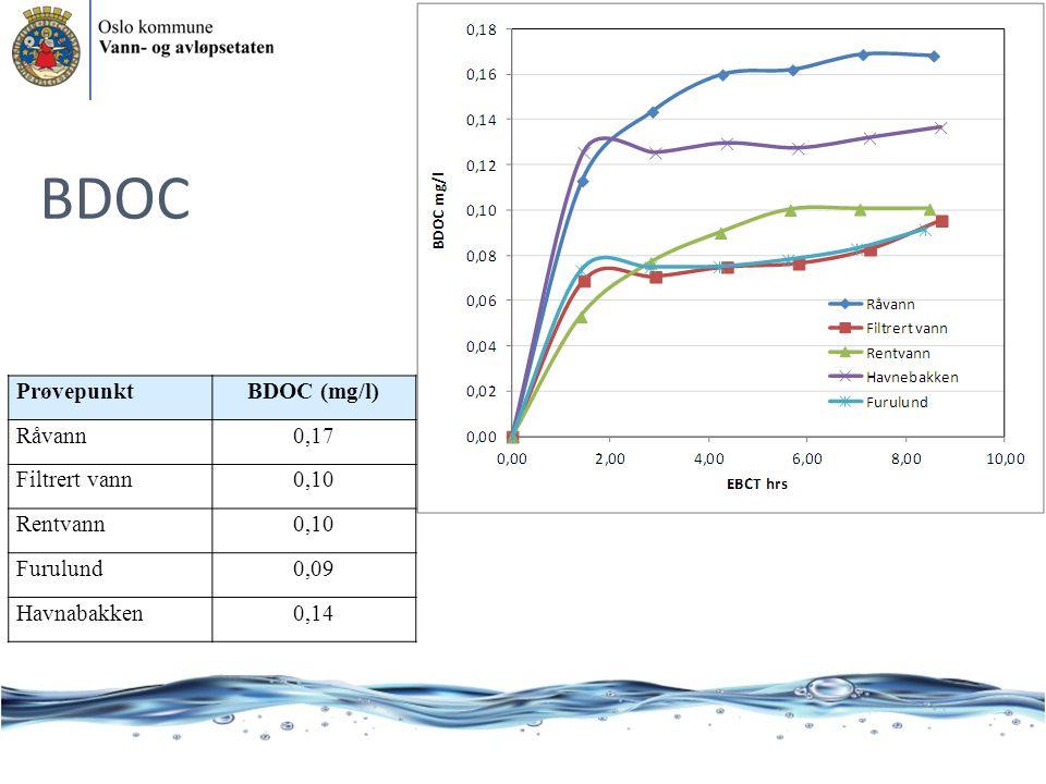 PrøvepunktBDOC (mg/l) Råvann0,17 Filtrert vann0,10 Rentvann0,10 Furulund0,09 Havnabakken0,14 BDOC