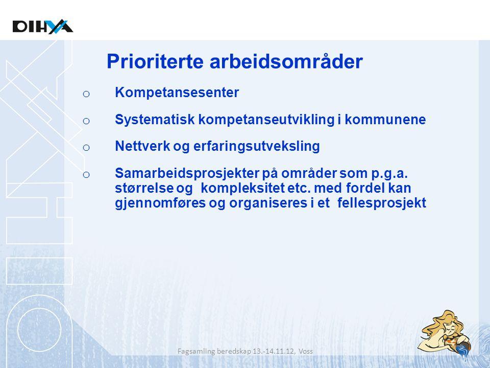 o Kompetansesenter o Systematisk kompetanseutvikling i kommunene o Nettverk og erfaringsutveksling o Samarbeidsprosjekter på områder som p.g.a. større