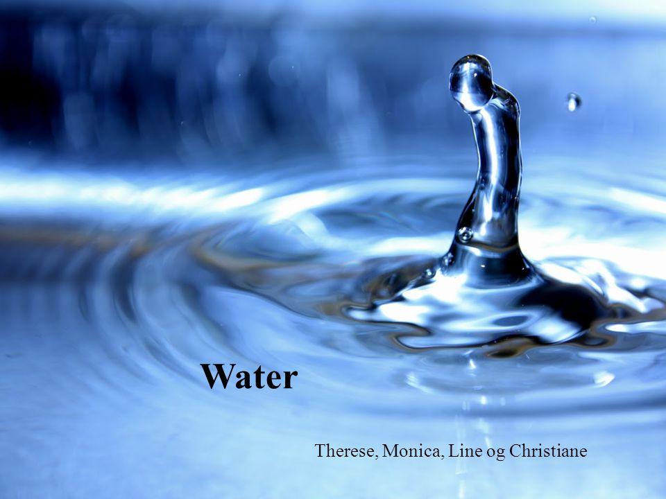 Water Therese, Monica, Line og Christiane