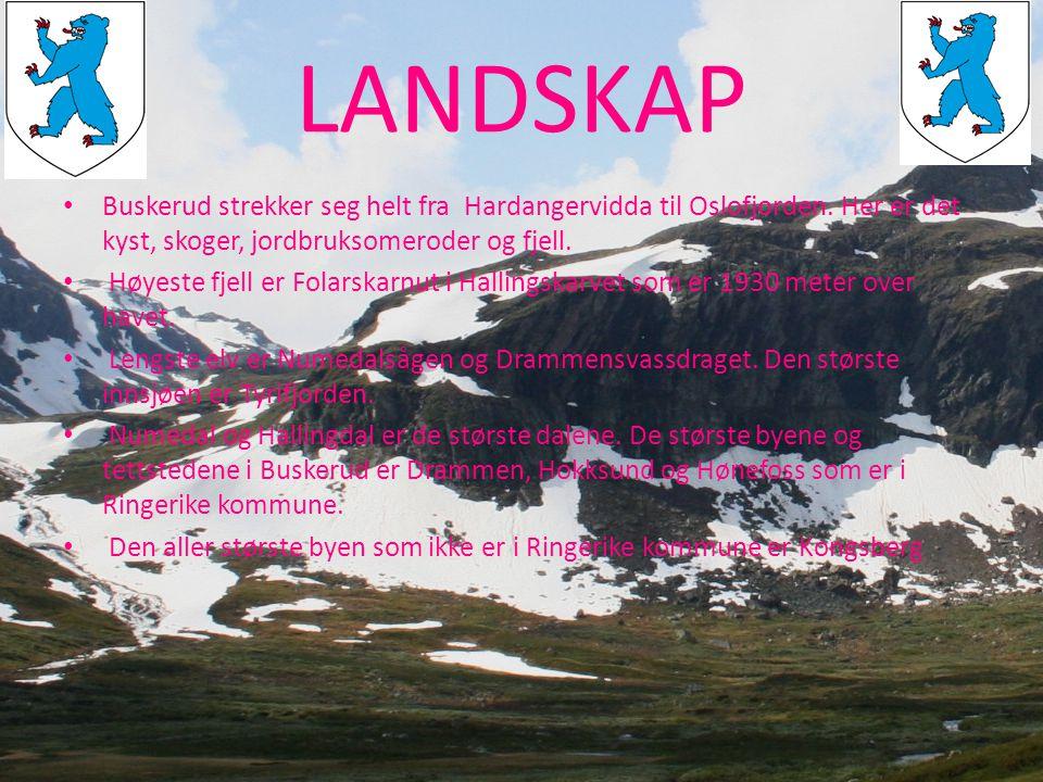 LANDSKAP • Buskerud strekker seg helt fra Hardangervidda til Oslofjorden. Her er det kyst, skoger, jordbruksomeroder og fjell. • Høyeste fjell er Fola