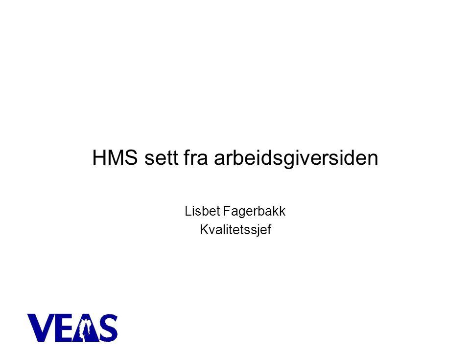 HMS sett fra arbeidsgiversiden Lisbet Fagerbakk Kvalitetssjef