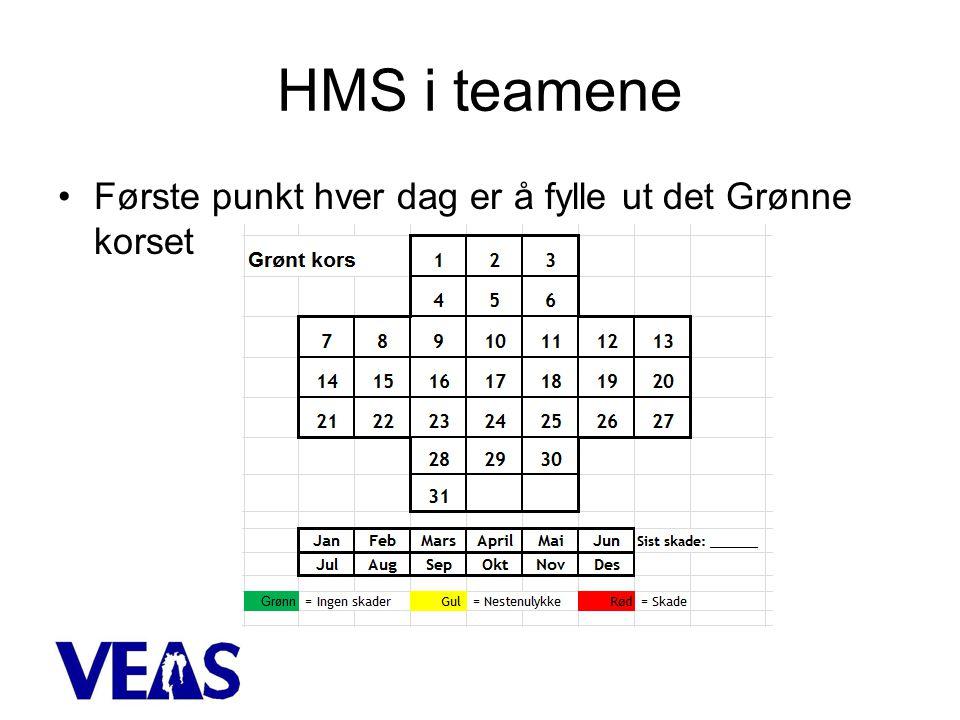 HMS i teamene •Første punkt hver dag er å fylle ut det Grønne korset