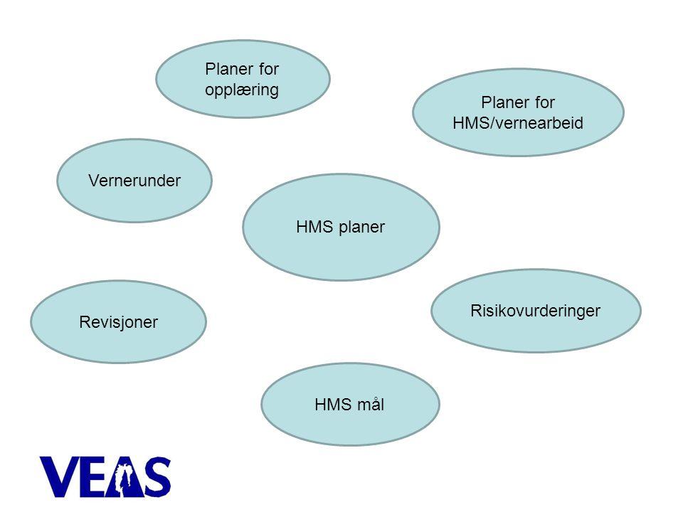 HMS planer Planer for opplæring Planer for HMS/vernearbeid Risikovurderinger HMS mål Revisjoner Vernerunder