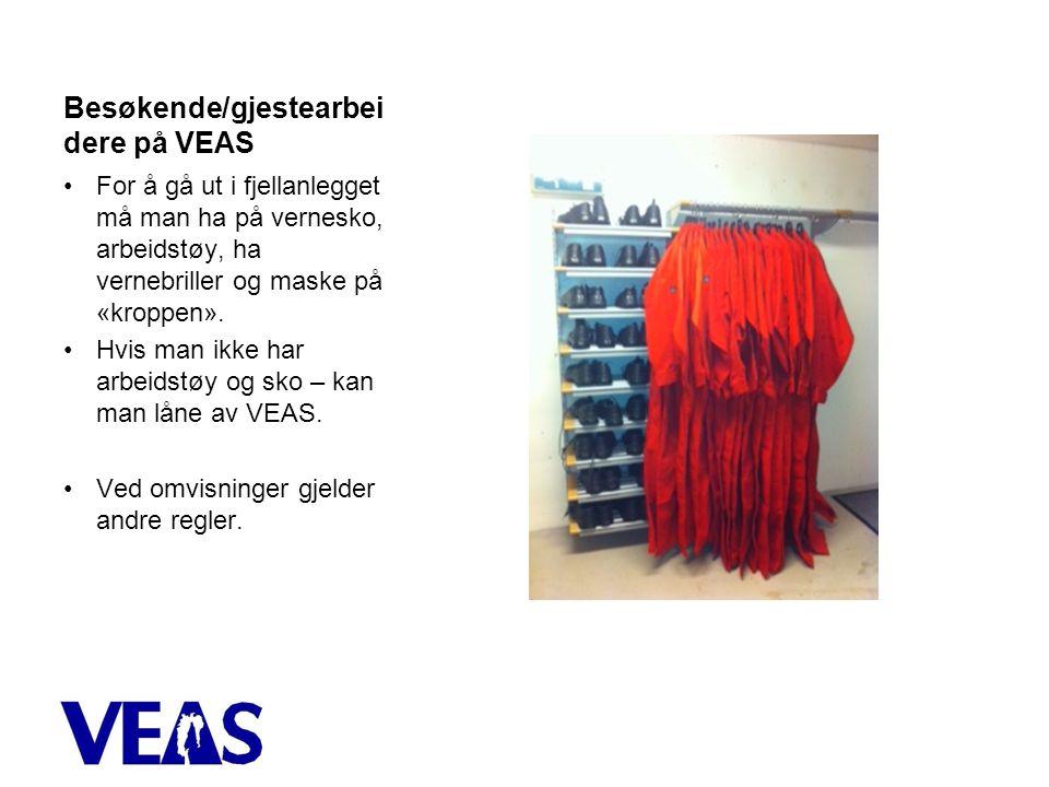 Besøkende/gjestearbei dere på VEAS •For å gå ut i fjellanlegget må man ha på vernesko, arbeidstøy, ha vernebriller og maske på «kroppen».