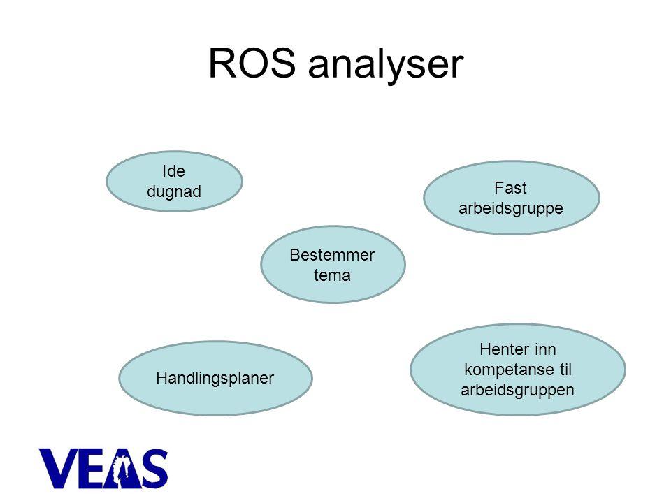 ROS analyser Bestemmer tema Ide dugnad Fast arbeidsgruppe Henter inn kompetanse til arbeidsgruppen Handlingsplaner