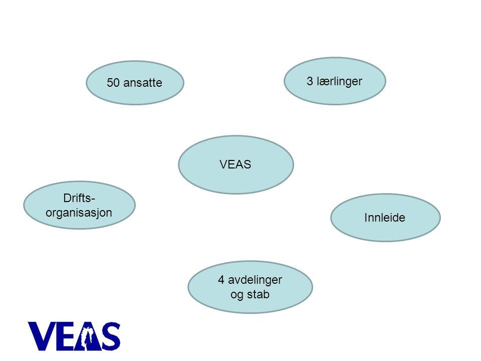 VEAS 50 ansatte 3 lærlinger Innleide 4 avdelinger og stab Drifts- organisasjon