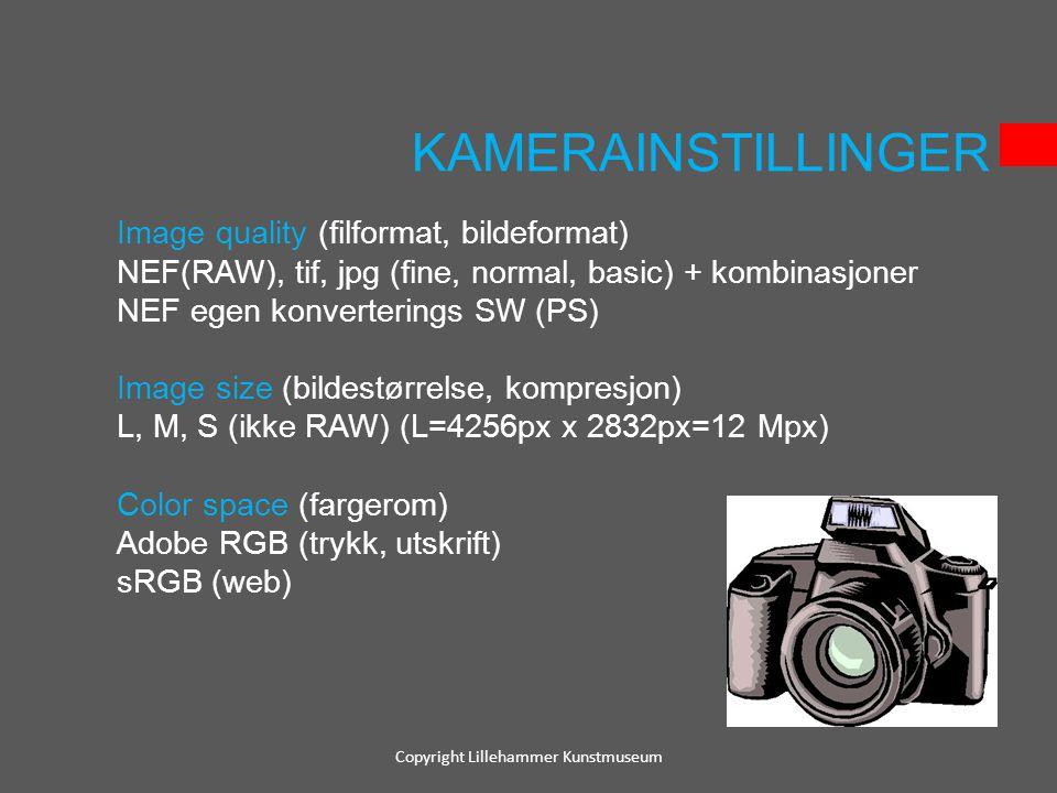 KAMERAINSTILLINGER Image quality (filformat, bildeformat) NEF(RAW), tif, jpg (fine, normal, basic) + kombinasjoner NEF egen konverterings SW (PS) Imag