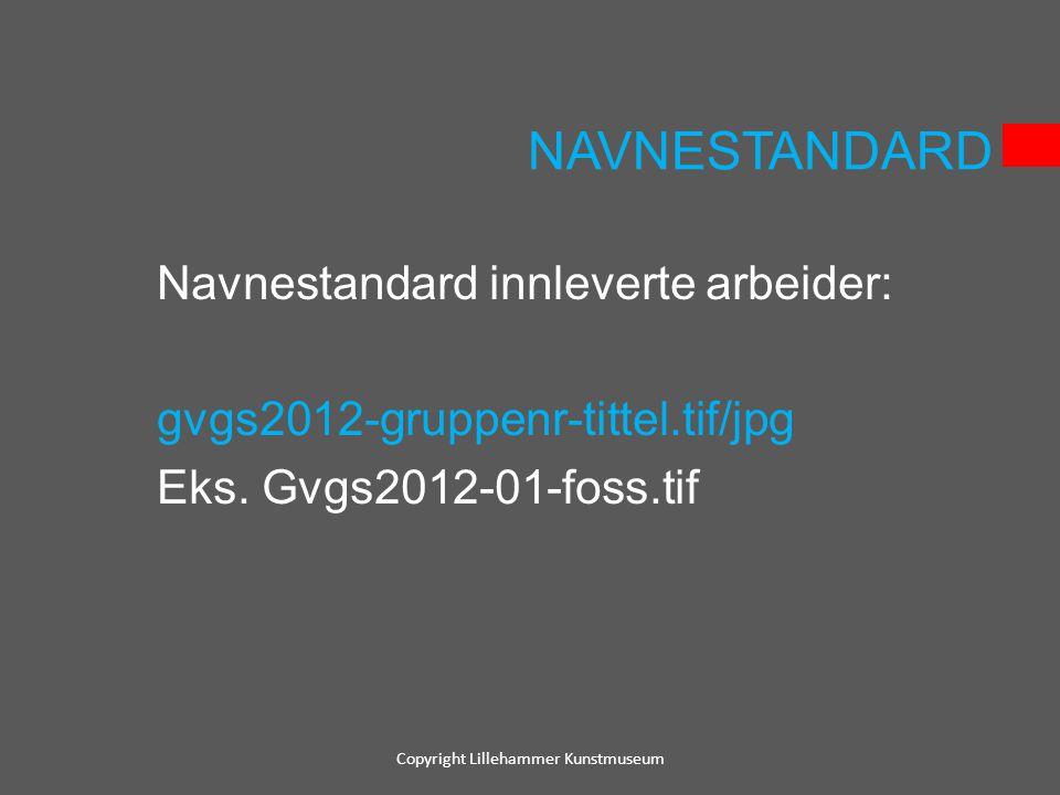 NAVNESTANDARD Navnestandard innleverte arbeider: gvgs2012-gruppenr-tittel.tif/jpg Eks. Gvgs2012-01-foss.tif Copyright Lillehammer Kunstmuseum