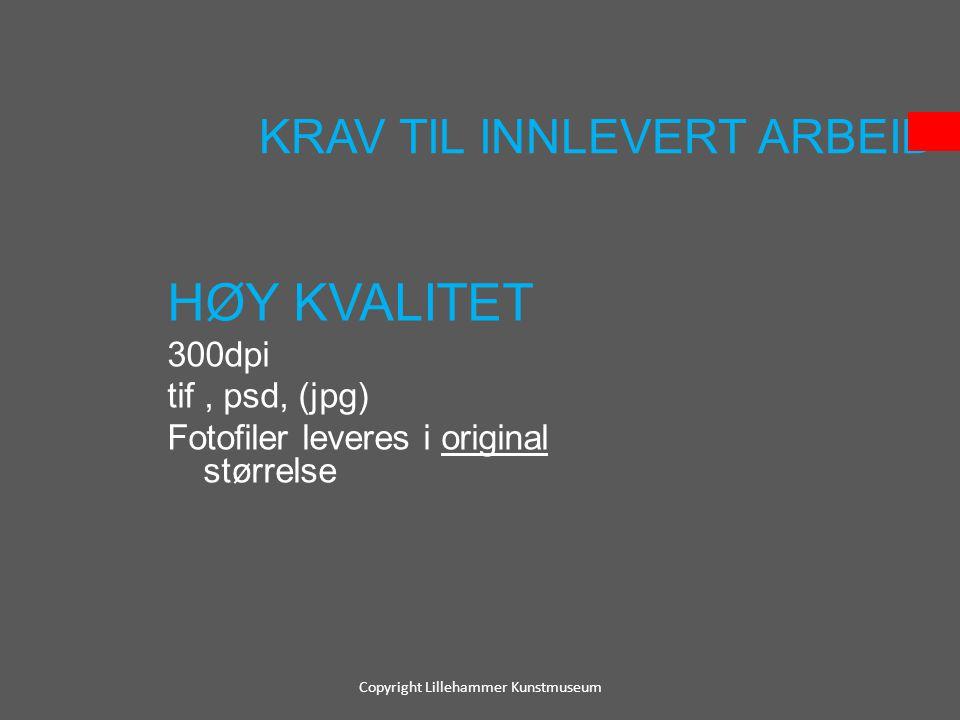 KRAV TIL INNLEVERT ARBEID HØY KVALITET 300dpi tif, psd, (jpg) Fotofiler leveres i original størrelse Copyright Lillehammer Kunstmuseum