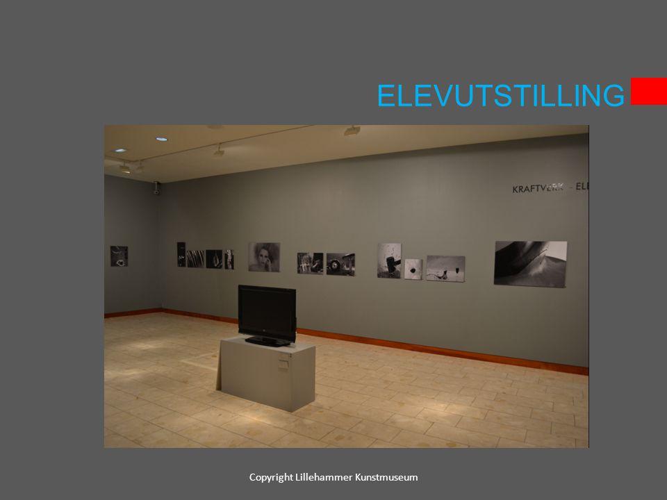 ELEVUTSTILLING Copyright Lillehammer Kunstmuseum