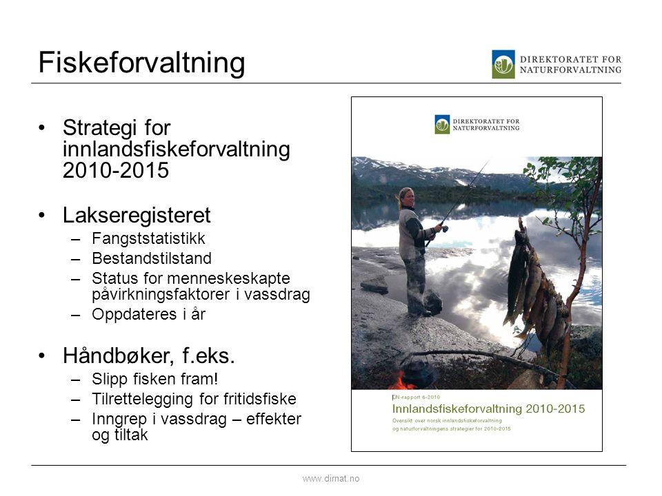 Fiskeforvaltning •Strategi for innlandsfiskeforvaltning 2010-2015 •Lakseregisteret –Fangststatistikk –Bestandstilstand –Status for menneskeskapte påvi