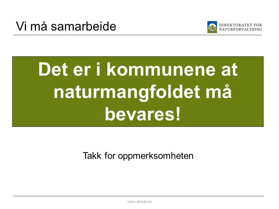 Vi må samarbeide www.dirnat.no Det er i kommunene at naturmangfoldet må bevares! Takk for oppmerksomheten