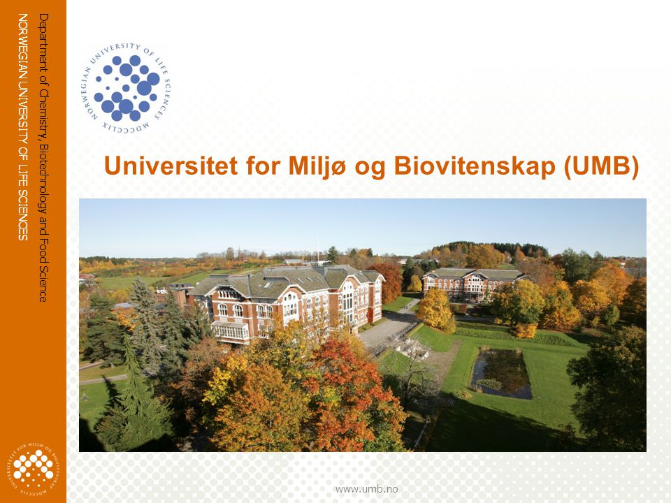 NORWEGIAN UNIVERSITY OF LIFE SCIENCES www.umb.no Department of Chemistry, Biotechnology and Food Science