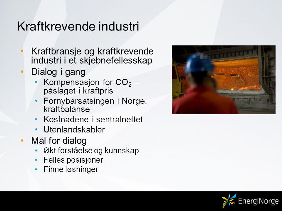 Kraftkrevende industri •Kraftbransje og kraftkrevende industri i et skjebnefellesskap •Dialog i gang •Kompensasjon for CO 2 – påslaget i kraftpris •Fo