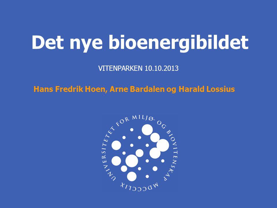 Det nye bioenergibildet VITENPARKEN 10.10.2013 Hans Fredrik Hoen, Arne Bardalen og Harald Lossius