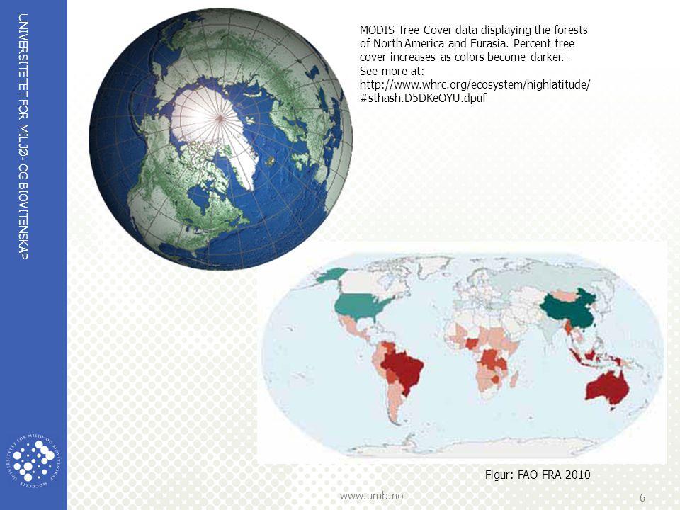 UNIVERSITETET FOR MILJØ- OG BIOVITENSKAP www.umb.no 6 Figur: FAO FRA 2010 MODIS Tree Cover data displaying the forests of North America and Eurasia. P