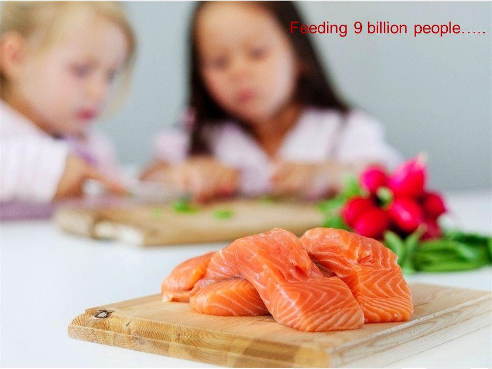 Feeding 9 billion people…..
