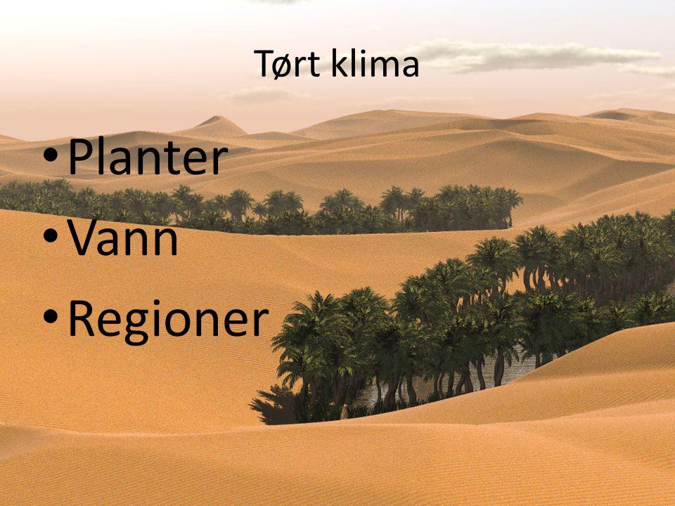 Tørt klima • Planter • Vann • Regioner