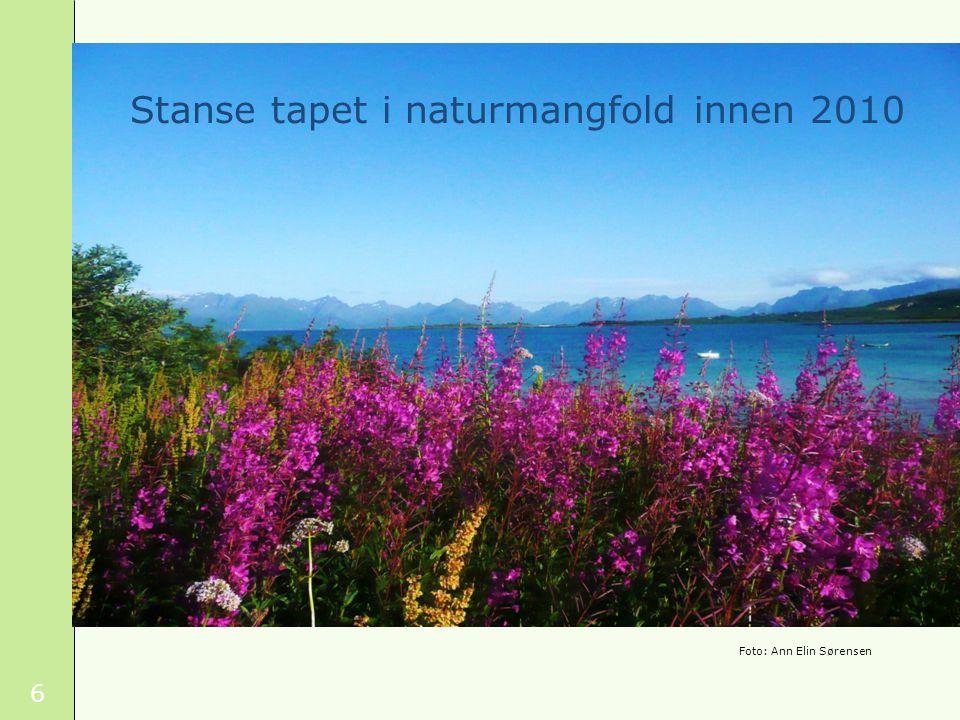 6 Stanse tapet i naturmangfold innen 2010 Foto: Ann Elin Sørensen