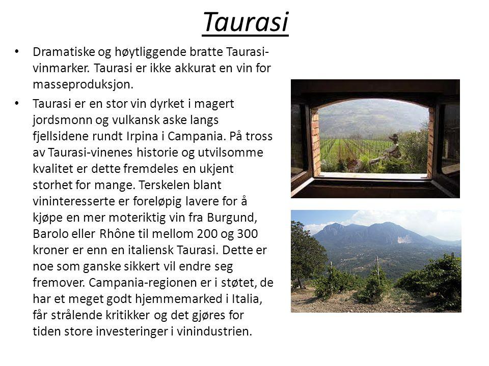Taurasi • Dramatiske og høytliggende bratte Taurasi- vinmarker. Taurasi er ikke akkurat en vin for masseproduksjon. • Taurasi er en stor vin dyrket i