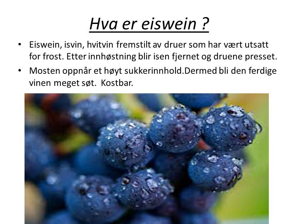 Hva er eiswein ? • Eiswein, isvin, hvitvin fremstilt av druer som har vært utsatt for frost. Etter innhøstning blir isen fjernet og druene presset. •