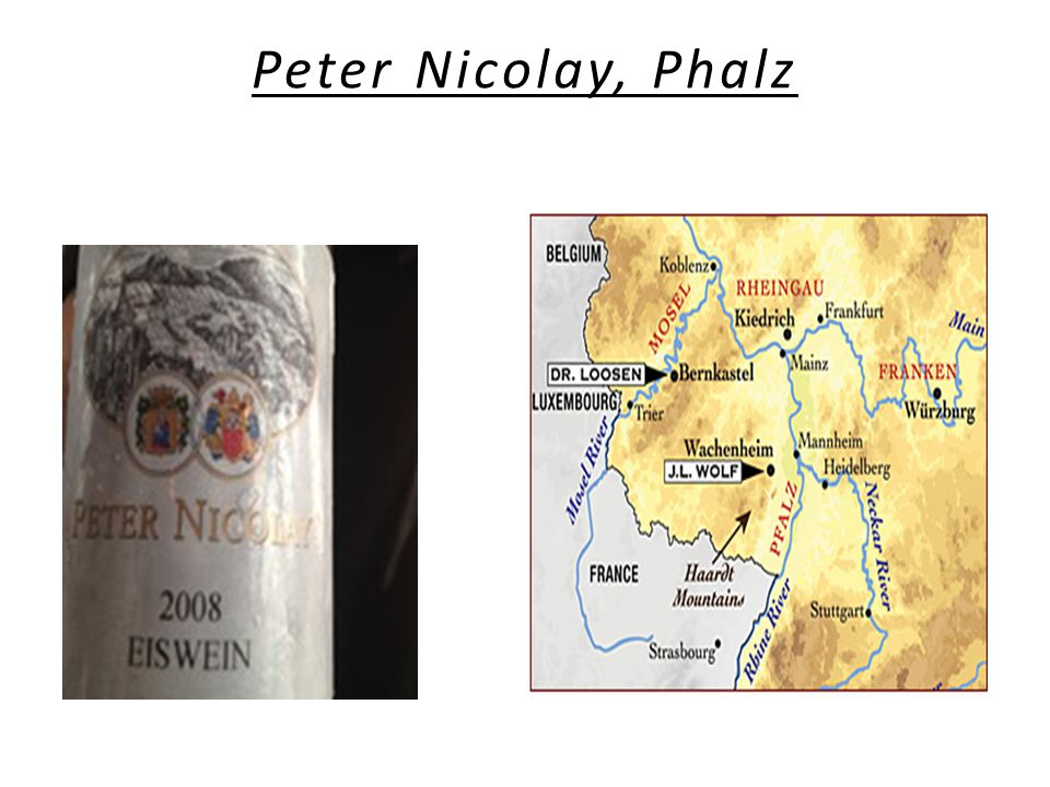 Peter Nicolay, Phalz