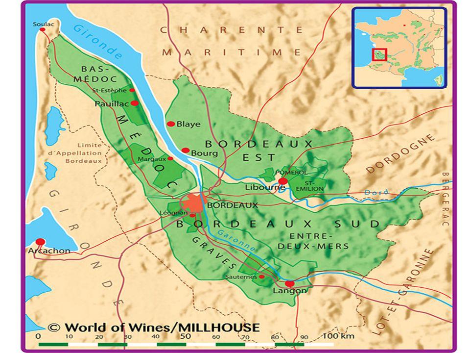 Chateau Potensac • Ch potensac er en ledende Cru Bougeois som ligger lengst nord i Medoc.