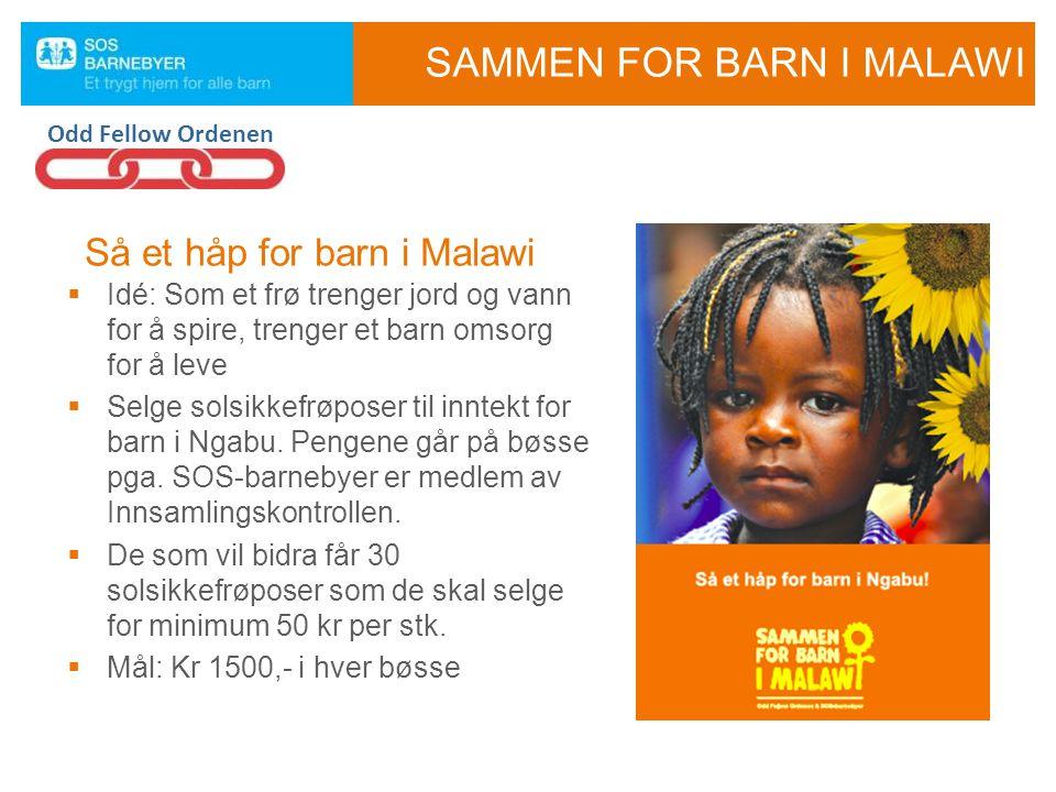  Idé: Som et frø trenger jord og vann for å spire, trenger et barn omsorg for å leve  Selge solsikkefrøposer til inntekt for barn i Ngabu. Pengene g