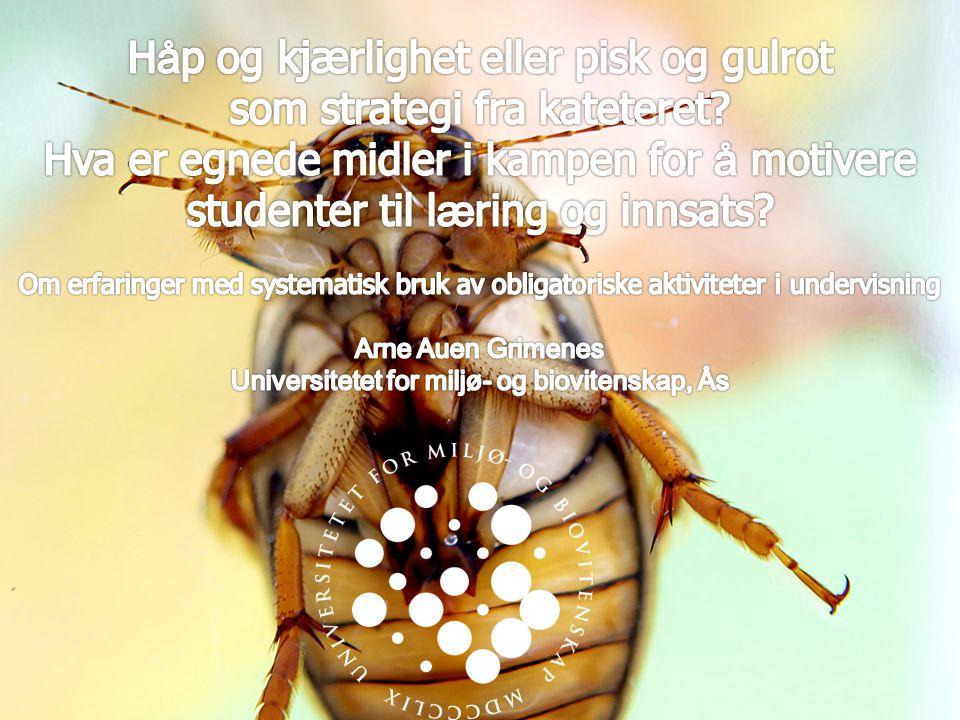 UNIVERSITETET FOR MILJØ- OG BIOVITENSKAP www.umb.no 2 H å p og kjærlighet eller pisk og gulrot som strategi fra kateteret.