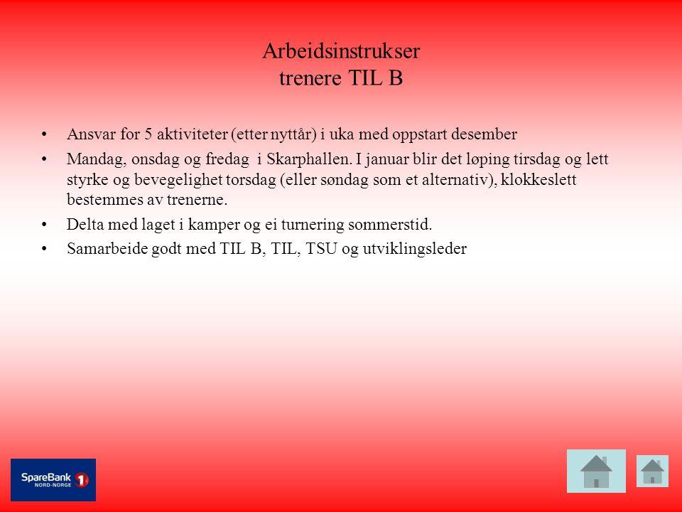 Arbeidsinstrukser trenere TIL B •Ansvar for 5 aktiviteter (etter nyttår) i uka med oppstart desember •Mandag, onsdag og fredag i Skarphallen. I januar
