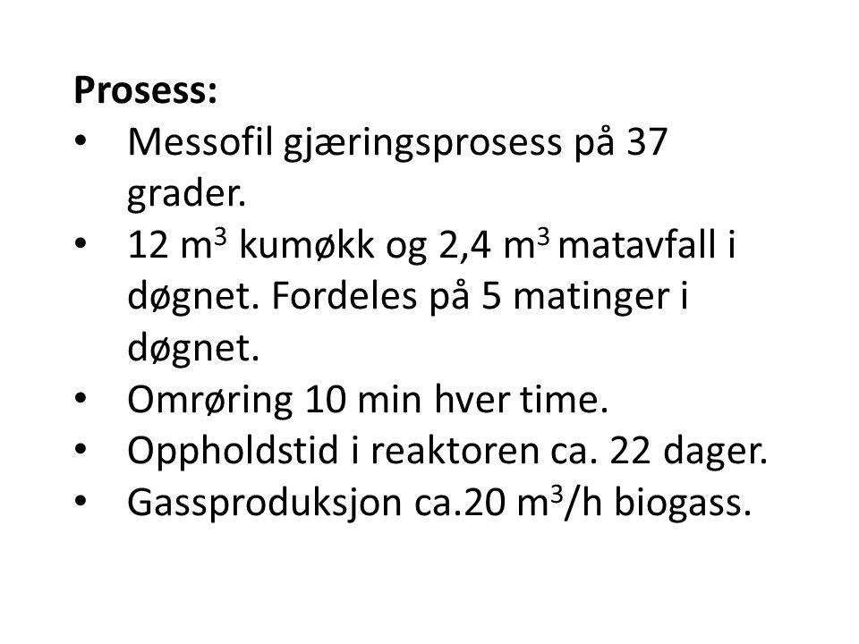Prosess: • Messofil gjæringsprosess på 37 grader. • 12 m 3 kumøkk og 2,4 m 3 matavfall i døgnet. Fordeles på 5 matinger i døgnet. • Omrøring 10 min hv