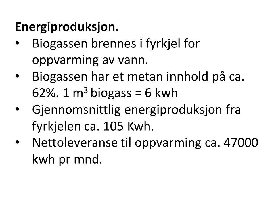 Energiproduksjon. • Biogassen brennes i fyrkjel for oppvarming av vann. • Biogassen har et metan innhold på ca. 62%. 1 m 3 biogass = 6 kwh • Gjennomsn