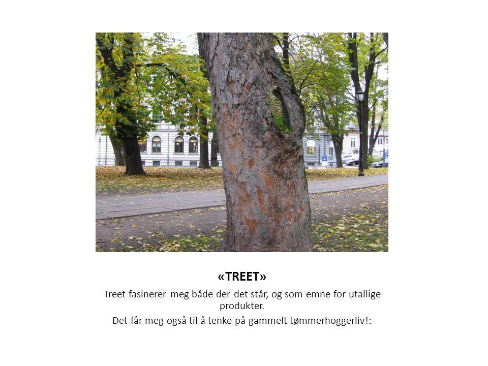 «TREET» Treet fasinerer meg både der det står, og som emne for utallige produkter. Det får meg også til å tenke på gammelt tømmerhoggerliv!:
