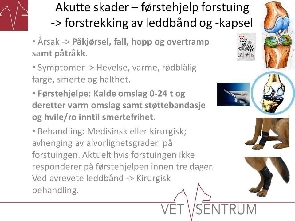 Akutte skader – førstehjelp forstuing -> forstrekking av leddbånd og -kapsel • Årsak -> Påkjørsel, fall, hopp og overtramp samt påtråkk. • Symptomer -