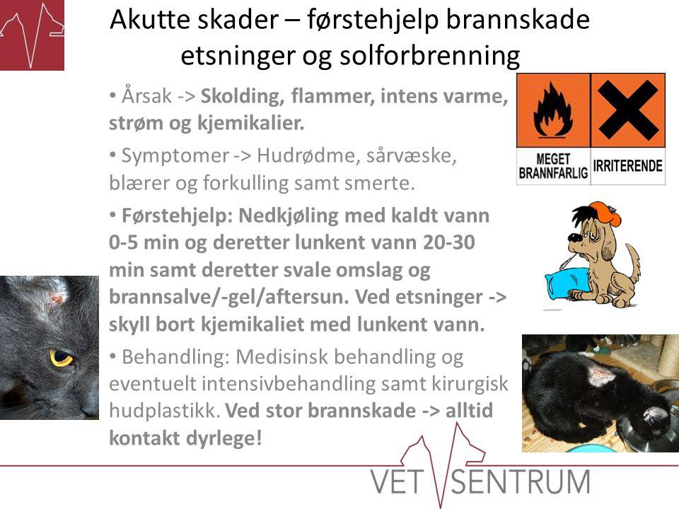 Akutte skader – førstehjelp brannskade etsninger og solforbrenning • Årsak -> Skolding, flammer, intens varme, strøm og kjemikalier. • Symptomer -> Hu