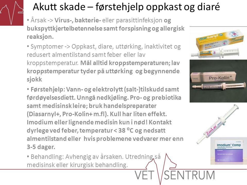 Akutt skade – førstehjelp oppkast og diaré • Årsak -> Virus-, bakterie- eller parasittinfeksjon og bukspyttkjertelbetennelse samt forspisning og aller