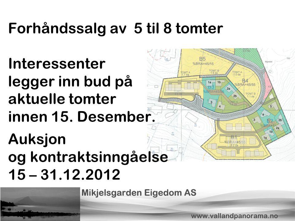 Forhåndssalg av 5 til 8 tomter Interessenter legger inn bud på aktuelle tomter innen 15. Desember. Auksjon og kontraktsinngåelse 15 – 31.12.2012