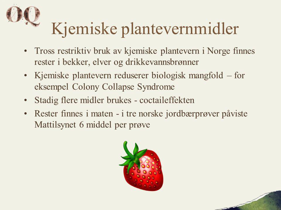 Kjemiske plantevernmidler •Tross restriktiv bruk av kjemiske plantevern i Norge finnes rester i bekker, elver og drikkevannsbrønner •Kjemiske plantevern reduserer biologisk mangfold – for eksempel Colony Collapse Syndrome •Stadig flere midler brukes - coctaileffekten •Rester finnes i maten - i tre norske jordbærprøver påviste Mattilsynet 6 middel per prøve